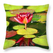 Water Lily Throw Pillow by Darren Fisher