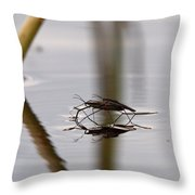 Water Skaters Throw Pillow
