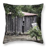 Watercolor Barn Throw Pillow by Joan Carroll