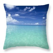 Waters Off The West Coast Throw Pillow