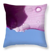 Wet Cyclamen Petal Against Blue Sky Throw Pillow