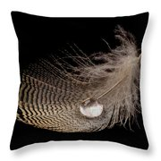Wet Feather Throw Pillow