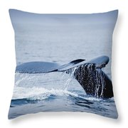 Whales Fluke Throw Pillow