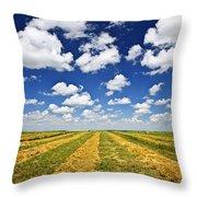 Wheat Farm Field At Harvest In Saskatchewan Throw Pillow by Elena Elisseeva