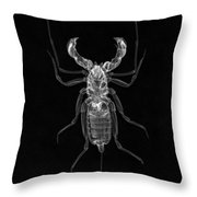 Whipscorpion X-ray Throw Pillow