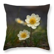 White Dryas Throw Pillow
