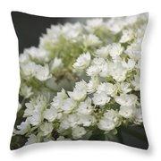 White Hydrangea Bloom Throw Pillow