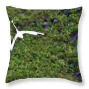 White-tailed Tropicbird Throw Pillow