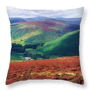 Wicklow Way, Co Wicklow, Ireland Long Throw Pillow