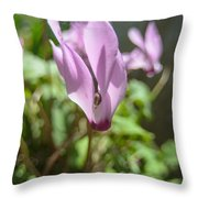 Wild Cyclamen Throw Pillow