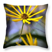 Wild Swamp Daisy Throw Pillow