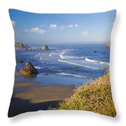 Wildflowers And Rock Formations Along Throw Pillow