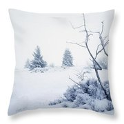 Winter On The Moor Throw Pillow