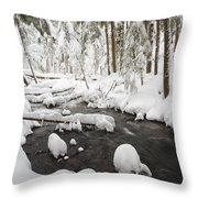 Winter Snow Along Still Creek In Mt Throw Pillow