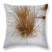 Winter Whisper Throw Pillow
