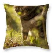 Wonky Eyed Tiger Throw Pillow