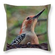 Woodpecker II Throw Pillow