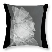 X-ray Of A Bag Of Corn Chips Throw Pillow