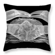 X-ray Of A Crab Throw Pillow