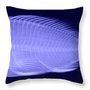 X-ray Of A Flame Hawkfish Throw Pillow