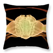 X-ray Of Deep Water Crab Throw Pillow