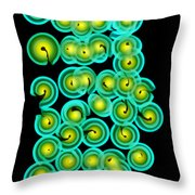 X-ray Of Pasta Throw Pillow