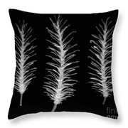 X-ray Of Pine Cones Throw Pillow