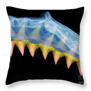 X-ray Of Shark Jaws Throw Pillow