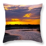 Luminous Lavenders Throw Pillow