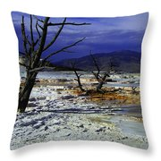 Yellowstone National Park 6 Throw Pillow
