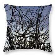 Yet To Spring Throw Pillow