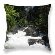 Yosemite National Park 2011 Throw Pillow