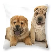 Young Dogs Throw Pillow