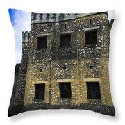 Zanzibar Old Fort Throw Pillow by Darcy Michaelchuk
