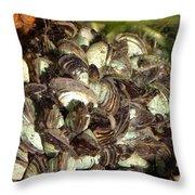 Zebra Mussels Dreissena Polymorpha Throw Pillow