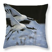 A Pair Of Japanese Or Red-crowned Throw Pillow