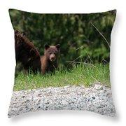 Black Bear Family Throw Pillow