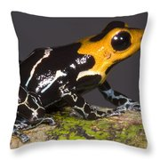 Crowned Poison Frog Throw Pillow