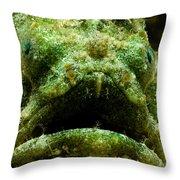 Frogfish Throw Pillow