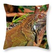 Iguana Lizard Throw Pillow