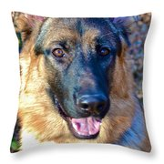 10-month-old Shepherd 2 Throw Pillow