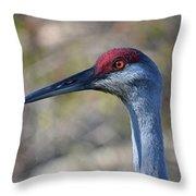 10- Sandhill Crane Throw Pillow