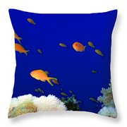 Underwater Landscape Throw Pillow