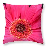 1002 Throw Pillow
