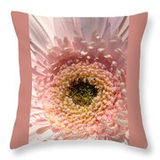 1005c-001 Throw Pillow