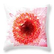 1049-2 Throw Pillow