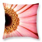 1067.2.c Throw Pillow