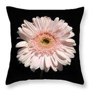 1074c Throw Pillow