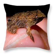 Darwins Frog Throw Pillow