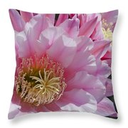 Pink Cactus Flowers Throw Pillow